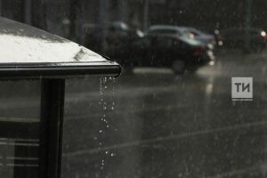 Последний день июля в Татарстане будет прохладным и дождливым