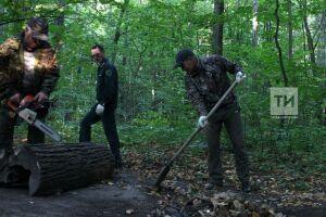 «Чистые леса Татарстана» объединят 10 тысяч добровольцев на уборке леса от мусора