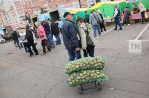 Для проведения сельхозярмарок задействуют 15 площадок во всех районах Казани