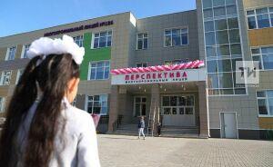 Многопрофильный лицей «Перспектива» на 1224 места открылся в Казани