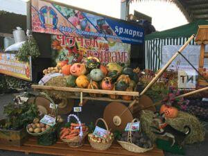 В мэрии Казани назвали места проведения осенних сельскохозяйственных ярмарок