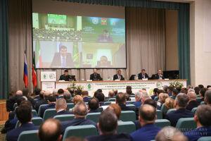 Минниханов поручил разработать программу восстановления лесозащитных полос в РТ