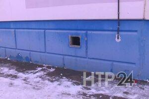 В Нижнекамске кошки будут спасаться от непогоды в подвалах жилых домов