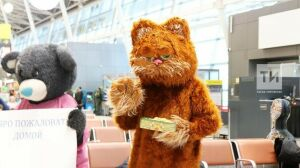 Переодетый в кота Гарфилда казанец встретил любимую в аэропорту и сделал предложение