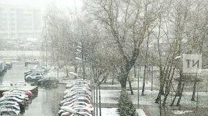 Синоптики предупреждают о мокром снеге и дожде в Татарстане