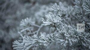 В Татарстане похолодает до 26 градусов мороза