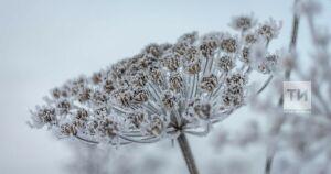 В Татарстане похолодает до 11 градусов мороза