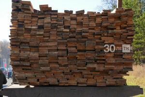 В Минлесхозе РТ объяснили, какую древесину можно перевозить без спецдокументов