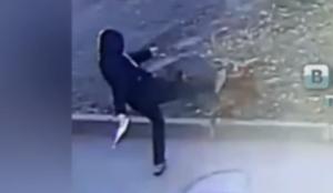 Полицейские начали проверку после видео, на котором казанец избивает собаку