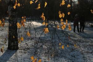 Татарстанцев предупредили о гололеде и сильном ветре