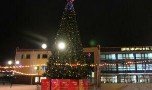 Ель 15 метров и парад Дедов Морозов: в Менделеевске готовятся к Новому году