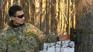 В лесных массивах около Нижнекамска установили фотоловушки для «черных лесорубов»