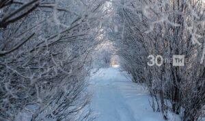 В Татарстане ожидается до 27 градусов ниже нуля