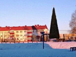 В Лаишеве установили главную городскую елку