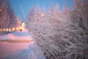 В Татарстане ожидается до 19 градусов мороза