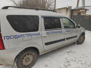 В казанском приюте, где на видео сняли труп собаки, начали прокурорскую проверку