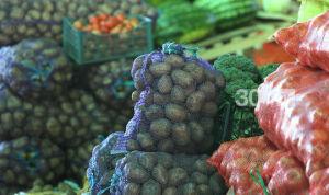 Татарстанцев приглашают на праздничные сельхозярмарки за фермерской продукцией