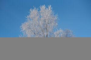 В Татарстане ожидаются ветер и до 25 градусов мороза