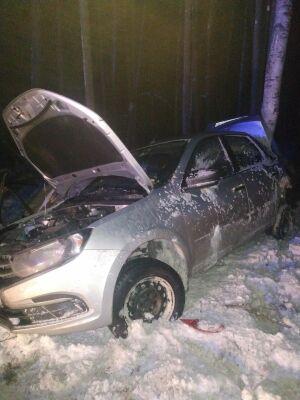 Легковушка вылетела в кювет и врезалась в дерево в РТ, водитель в больнице