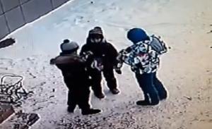 Начата проверка в РТ после видео с детьми, укравшими игрушки из магазина