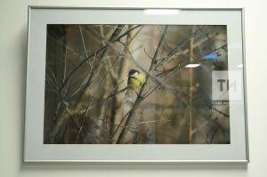В казанской Галерее современного искусства открылась фотовыставка Юрия Филимонова