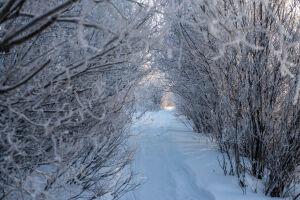 В Татарстане ожидается туман и до 27 градусов мороза