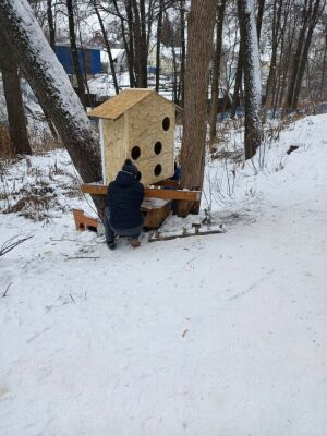 В лениногорском лесопарке волонтеры установили домик для бездомных кошек