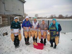 В селе Новые Ургагары вспомнили забытые ритуалы на празднике гусиного пера