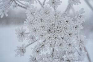 В Татарстане ожидается до 28 градусов мороза