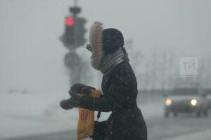 МЧС рекомендует татарстанцам быть осторожными во время сильного ветра и метели