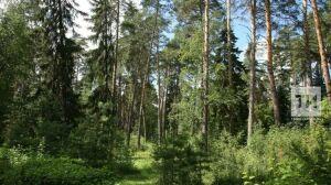В Татарстане создадут пять новых особо охраняемых природных территорий