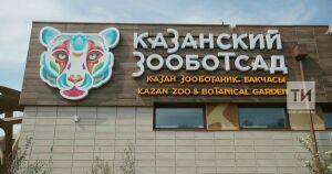 В казанском зоопарке на Масленицу покажут представление «Осень, лето, весна, зима»