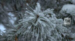 В Татарстане потеплеет до 2 градусов ниже нуля