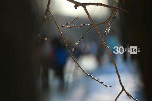 В Татарстане на этой неделе ожидается потепление до 10 градусов