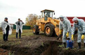 Ветслужба: Для содержания скотомогильников Татарстан ежегодно выделяет 42 млн рублей