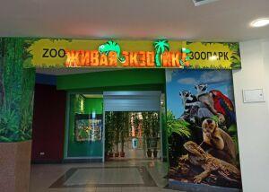 Кормить нельзя, смотреть: прокуратура нашла нарушения в работе зоопарка в ТЦ Казани