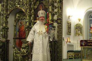 Зажечь свечи в окнах своих домов в ночь Пасхи призвал православных митрополит Феофан