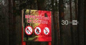 По нацпроекту «Экология» в Татарстане появятся две новые лесопожарные станции