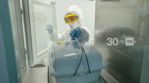 Роспотребнадзор РТ: В апреле завозными cтали 35% случаев заболевания Covid-19
