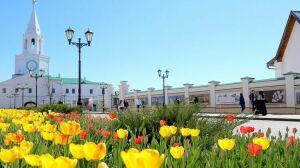 «Музейная весна Татарстана» впервые пройдет в онлайн-формате