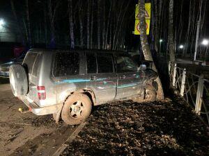 В Татарстане пьяная женщина, управляя иномаркой, врезалась в дерево