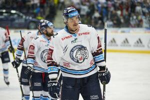 Защитник чешского клуба «Белые тигры» пополнил состав хоккейного «Нефтехимика»