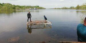 Два дачных поселка под Челнами затопило из-за перелива воды из Камы