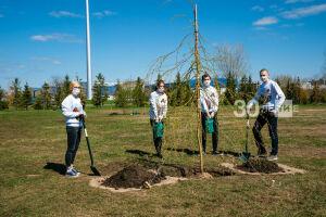 «Волонтеры Победы» помогли заложить памятную аллею в честь участников ВОВ в Казани