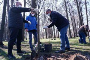 В Зеленодольске благодаря акции «Сады Победы» заложили липовую аллею в Парке Победы
