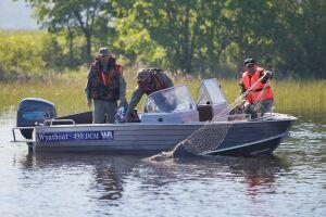 «От реки до прилавка»: как борются с незаконными ловлей и торговлей рыбой в РТ