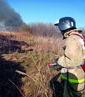 За сутки в Татарстане поймали и оштрафовали двоих поджигателей сухой травы