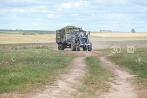 Профессор КФУ рассказал, что угрожает этим летом сельскому хозяйству