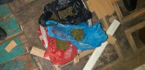 На чердаке у жителя Болгара полицейские нашли больше 2 кг «травки»