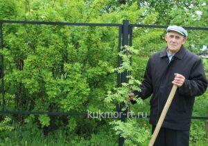 Житель Кукморского района посадил вдоль реки 170 саженцев сосны